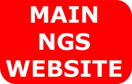 Link to main N Gauge Society website